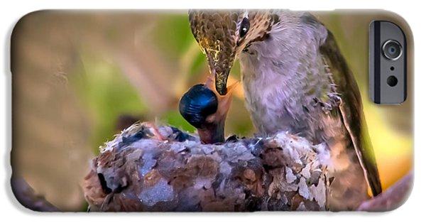 Birds iPhone Cases - Breakfast iPhone Case by Robert Bales