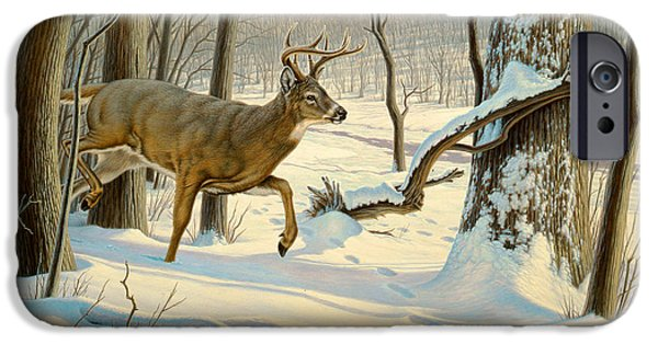 Tails iPhone Cases - Breaking Cover-Whitetail iPhone Case by Paul Krapf
