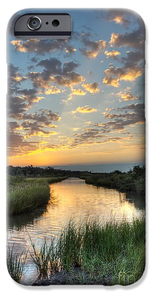 Bayou iPhone Cases - Breaking Dawn along the Bayou iPhone Case by Joan McCool