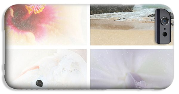 Cattleya iPhone Cases - Breathe . feel the wind . . . iPhone Case by Sharon Mau