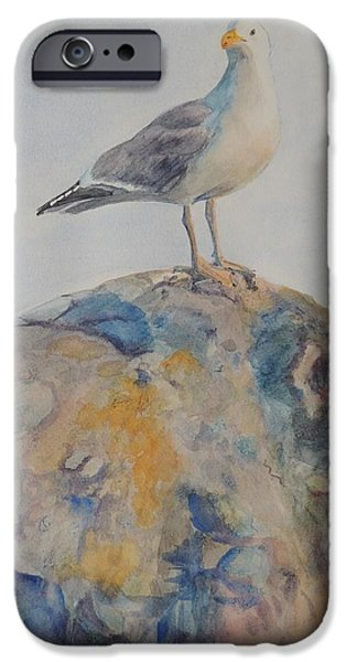 Herring Gull iPhone Cases - Brenton Point Herring Seagull 2 Newport RI  iPhone Case by Patty Kay Hall