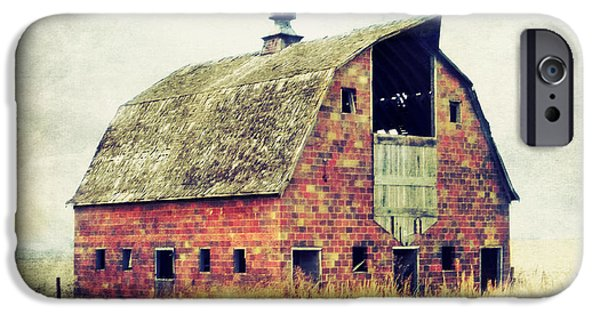 Barn Swallow Photographs iPhone Cases - Brick Barn  iPhone Case by Julie Hamilton