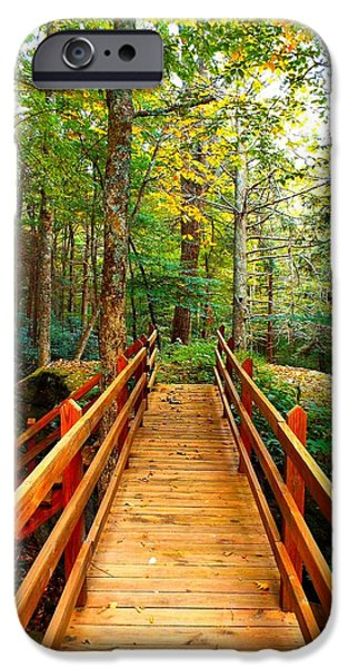 Autumn iPhone Cases - Bridge in the NC Forest iPhone Case by Cindy Croal