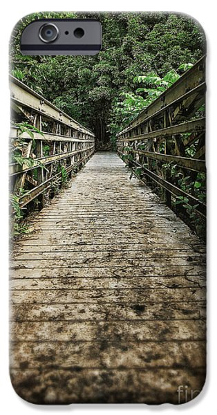 Pathway iPhone Cases - Bridge leading into the bamboo jungle iPhone Case by Edward Fielding