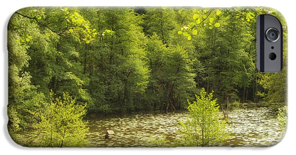 Deutsch iPhone Cases - Bright green spring landscape - lake and trees iPhone Case by Matthias Hauser