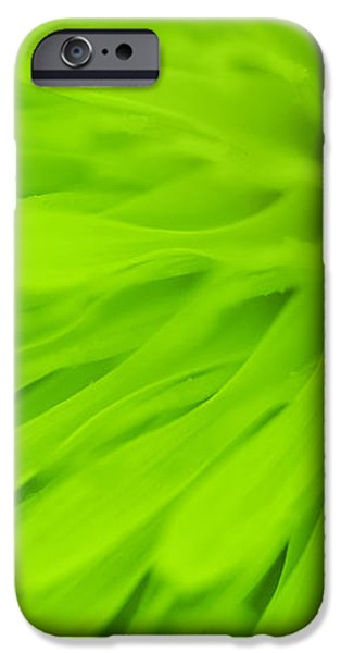 Bright Lime Green Dandelion Close Up iPhone Case by Natalie Kinnear