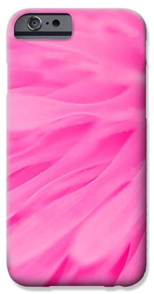 Bright Pink Dandelion Close Up iPhone Case by Natalie Kinnear