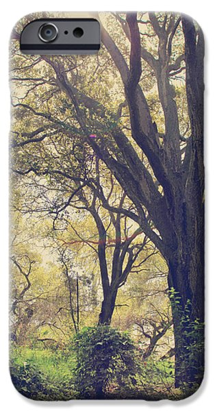 Tree iPhone Cases - Brightening Up the Day iPhone Case by Laurie Search