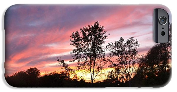 Winter Scene Pyrography iPhone Cases - Brilliant evening sunset iPhone Case by Carolyn Freligh