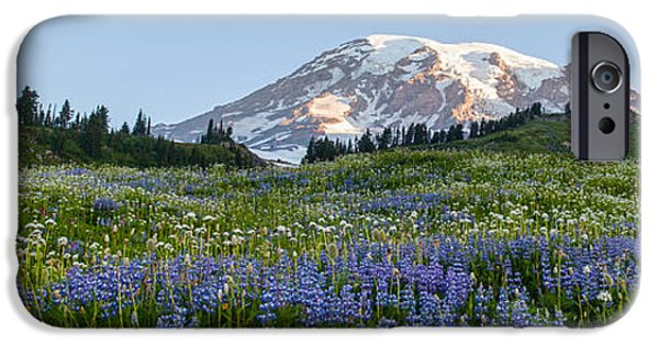 Meadow Photographs iPhone Cases - Brilliant Meadow iPhone Case by Mike Reid