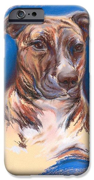 Bulls Pastels iPhone Cases - Brindle Pit Bull Portrait iPhone Case by MM Anderson