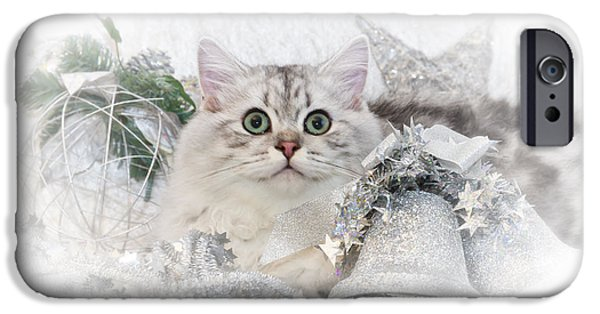 Young Digital Art iPhone Cases - British Longhair Cat CHRISTMAS TIME II iPhone Case by Melanie Viola