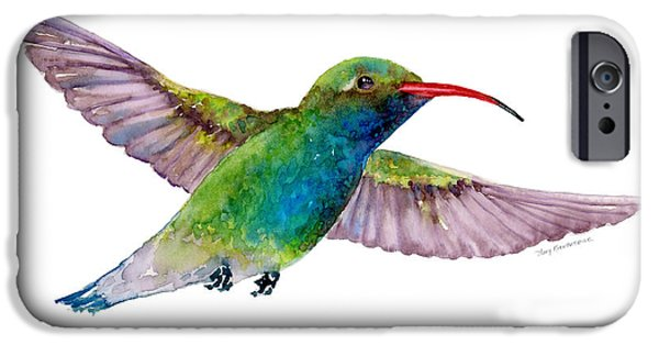 Lime iPhone Cases - Broad Billed Hummingbird iPhone Case by Amy Kirkpatrick