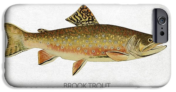 Fresh Water Fish iPhone Cases - Brook Trout iPhone Case by Aged Pixel
