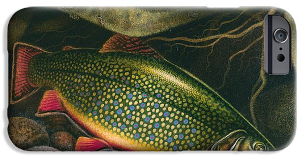 Tackle iPhone Cases - Brook Trout Lair iPhone Case by JQ Licensing