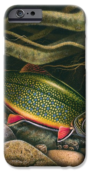Brook Trout Lair iPhone Case by JQ Licensing