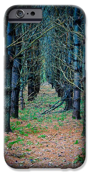 Brother iPhone Cases - Brothers Grimm Forest iPhone Case by Edward Fielding