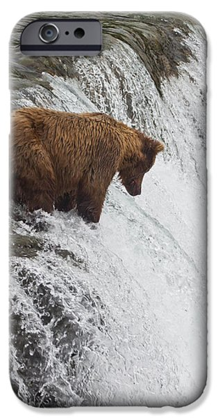 Ledge iPhone Cases - Brown Bear At Brooks Falls On Brooks iPhone Case by Jeff Schultz