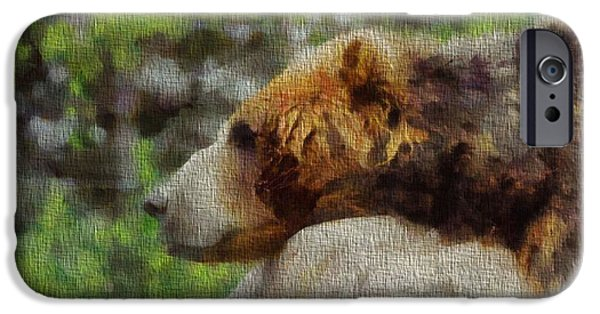 Kodiak iPhone Cases - Brown Bear Napping On Canvas iPhone Case by Dan Sproul