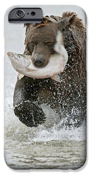 Best Sellers -  - Creek iPhone Cases - Brown Bear with Salmon catch iPhone Case by Gary Langley