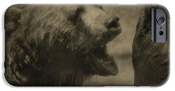 Kodiak iPhone Cases - Brown Bears iPhone Case by Dan Sproul