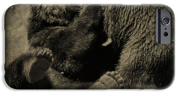 Kodiak iPhone Cases - Brown Bears Fighting iPhone Case by Dan Sproul