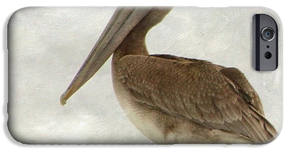 Sea Birds iPhone Cases - Brown Pelican iPhone Case by Angie Vogel