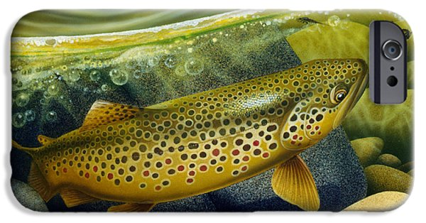 Flyfishing iPhone Cases - Brown Trout iPhone Case by Jon Q Wright