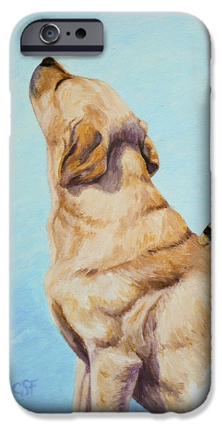 Brushing the Dog iPhone Case by Crista Forest