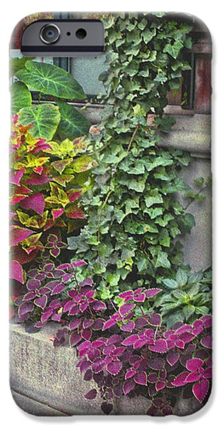 Bryant Park Grill 3 iPhone Case by Muriel Levison Goodwin