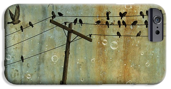 Bubbly iPhone Cases - Bubbly Birds iPhone Case by Gothicolors Donna Snyder