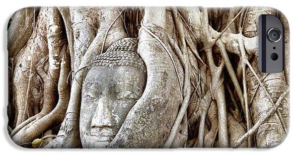 Best Sellers -  - Statue Portrait iPhone Cases - Buddha Head in Tree Wat Mahathat Ayutthaya  Thailand iPhone Case by Fototrav Print
