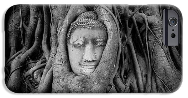 Tree Roots Photographs iPhone Cases - Buddha in the Banyan Tree iPhone Case by Dean Harte