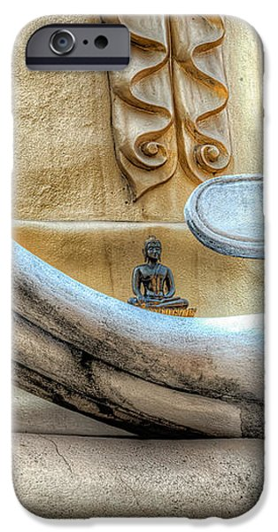 Buddha's Hand iPhone Case by Adrian Evans