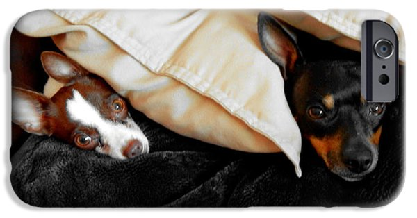 Puppy Love Greeting Cards iPhone Cases - Buddies iPhone Case by J Anthony