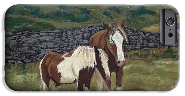 Fauna Pastels iPhone Cases - Buddies iPhone Case by Mary Benke