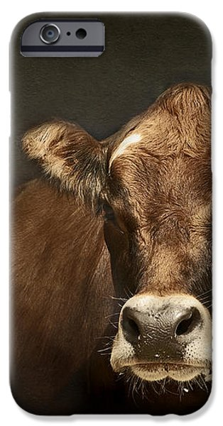 Buddy iPhone Case by Aimelle