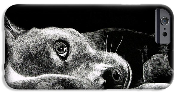 Dog Close-up Paintings iPhone Cases - Buddy iPhone Case by Bryan Horn