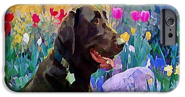 Chocolate Lab Digital Art iPhone Cases - Buddy in Heaven iPhone Case by Anne Sterling