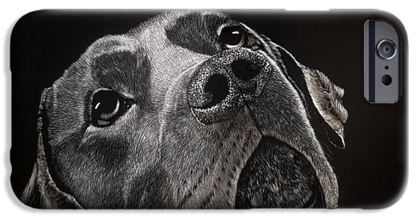 Chocolate Lab Mixed Media iPhone Cases - Buddy iPhone Case by Kathleen McCarthy