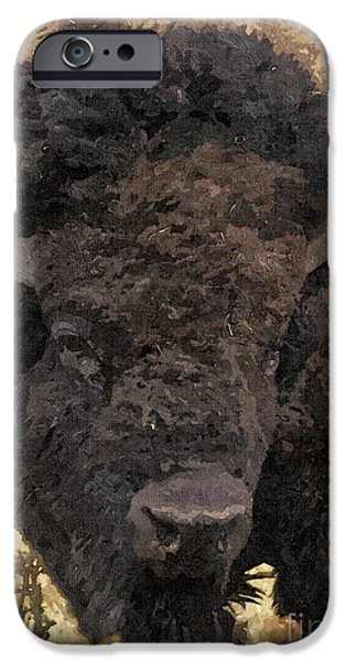 Buffalo head iPhone Case by Sara  Raber