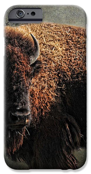 Buffalo Moon iPhone Case by Karen Slagle