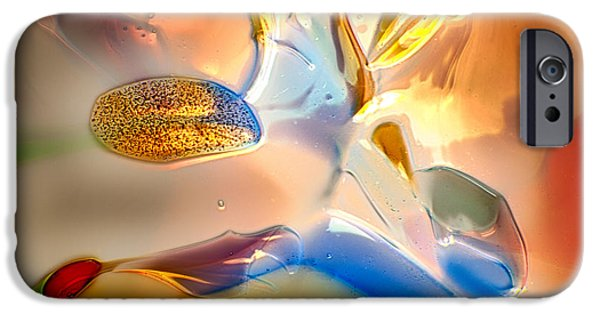 Creek Glass Art iPhone Cases - Bugs on Parade iPhone Case by Omaste Witkowski