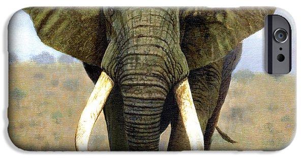 Elephants iPhone Cases - Bull Elephant iPhone Case by Chris Heitt