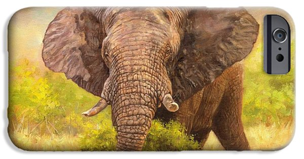 Elephant iPhone Cases - Bull Elephant iPhone Case by David Stribbling