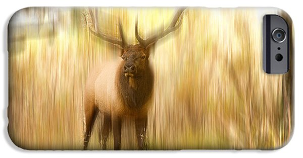Abstract Movement Photographs iPhone Cases - Bull Elk Forest Dreaming iPhone Case by James BO  Insogna
