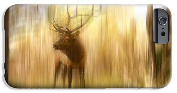 Abstract Movement Photographs iPhone Cases - Bull Elk Forest Gazing iPhone Case by James BO  Insogna