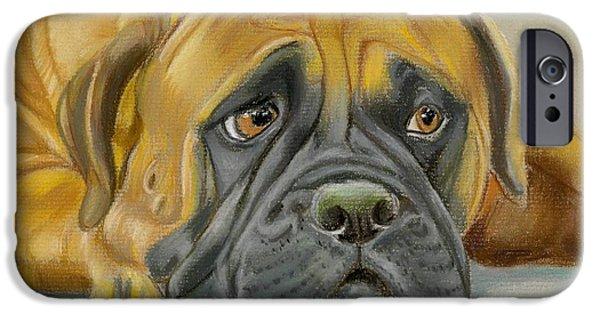 Mastif iPhone Cases - Bull Mastif iPhone Case by Ruth Seal