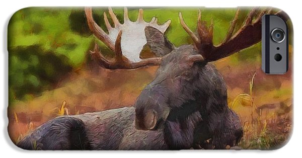 Bulls Mixed Media iPhone Cases - Bull Moose Relaxing iPhone Case by Dan Sproul