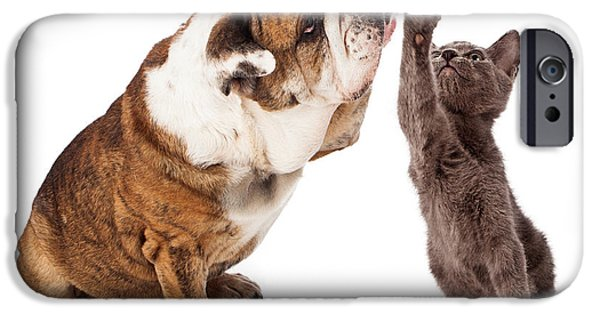 Friendly iPhone Cases - Bulldog and Kitten High Five  iPhone Case by Susan  Schmitz